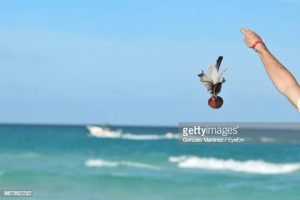 Cropped Image Of Hand Throwing Object In Sea