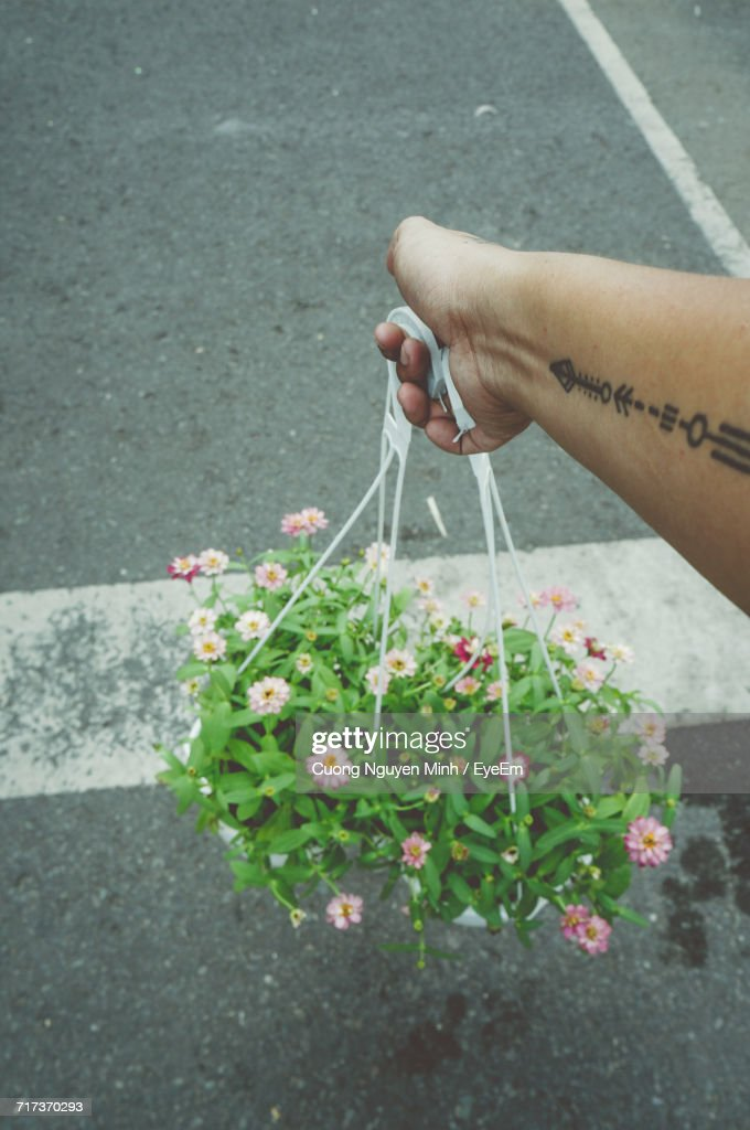 Cropped Image Of Hand With Tattoo Holding Flower Pots Over Road
