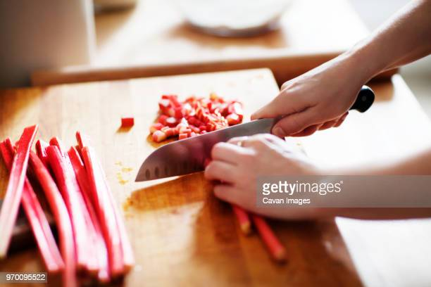 cropped image of hands cutting rhubarb - rhubarb stock photos and pictures