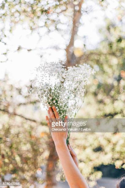 Cropped Image Of Hands Holding Bouquet