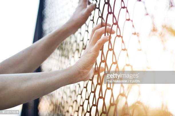 Cropped Image Of Hands Holding Chainlink Fence