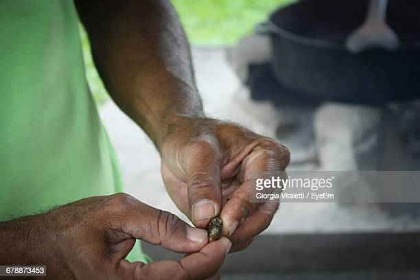 Cropped Image Of Hands Holding Cocoa Beans