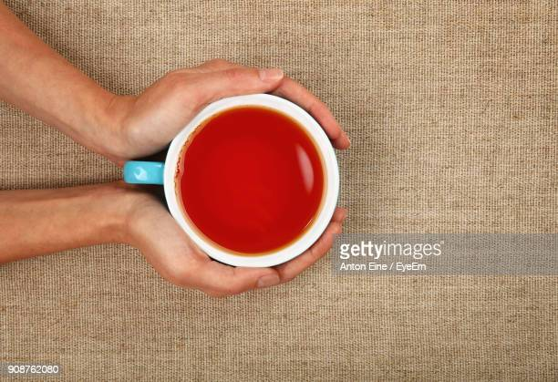 cropped image of hands holding tea cup - black tea stock pictures, royalty-free photos & images