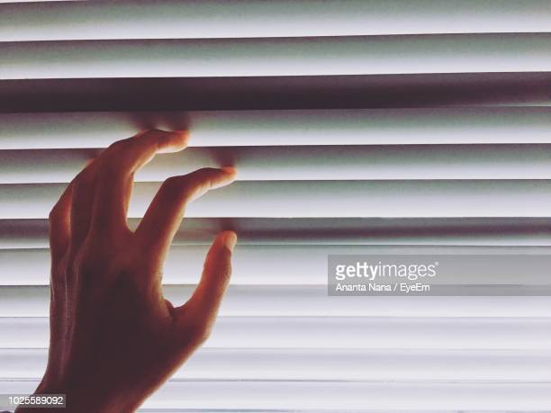 Cropped Image Of Hands Touching Blinds