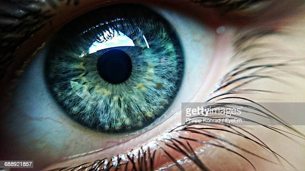 cropped image of human eye - close up stock pictures, royalty-free photos & images