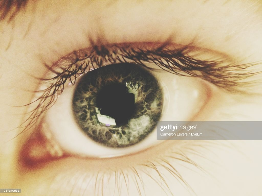 Cropped Image Of Human Eye : Stock Photo