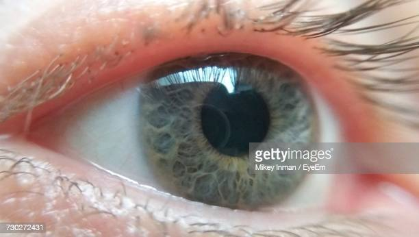 Cropped Image Of Human Eye