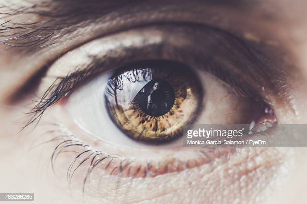 cropped image of human eye - eye stock pictures, royalty-free photos & images