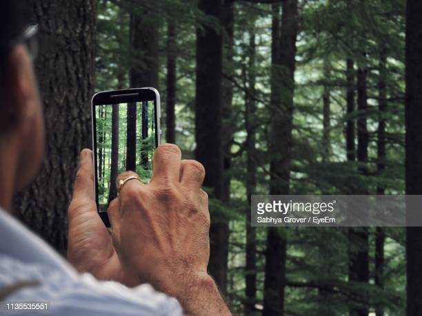 Cropped Image Of Man Photographing Trees Using Mobile Phone In Forest