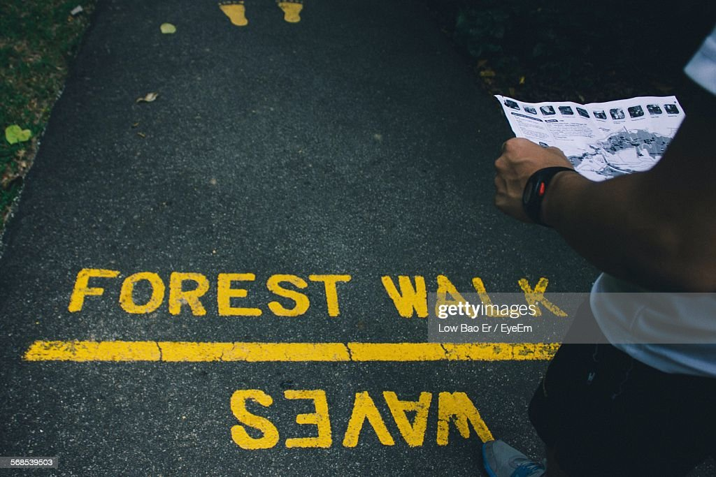 Cropped Image Of Man Standing On Street Reading Road Map In Forest : Stock Photo
