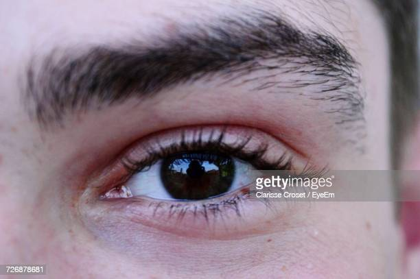 cropped image of man with brown eye - brown eyes stock photos and pictures