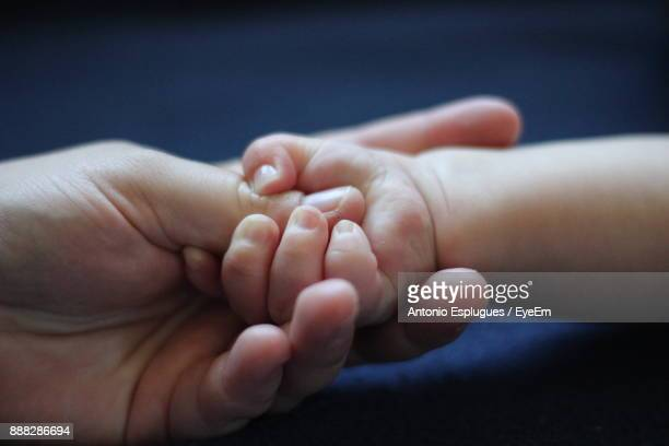 Cropped Image Of Mother Holding Baby Hand