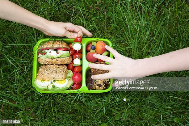 Cropped Image Of People With Lunch Box On Grassy Field At Park