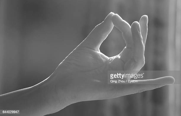 Cropped Image Of Person Doing Yoga Mudra