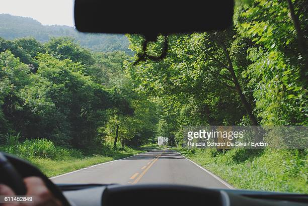 Cropped Image Of Person Driving Car Against Trees