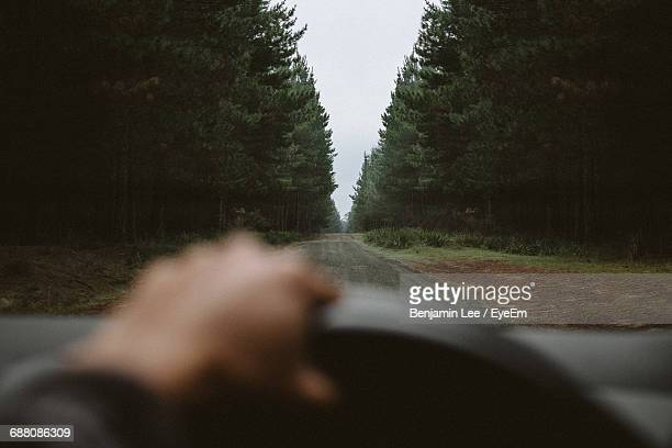 Cropped Image Of Person Driving Car Amidst Trees In Forest