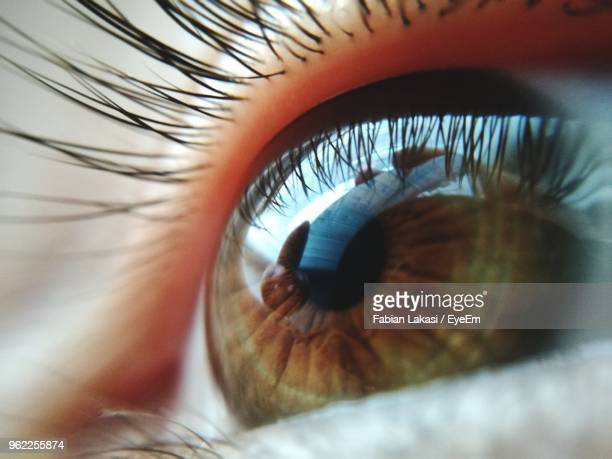 cropped image of person eye - nahaufnahme stock-fotos und bilder