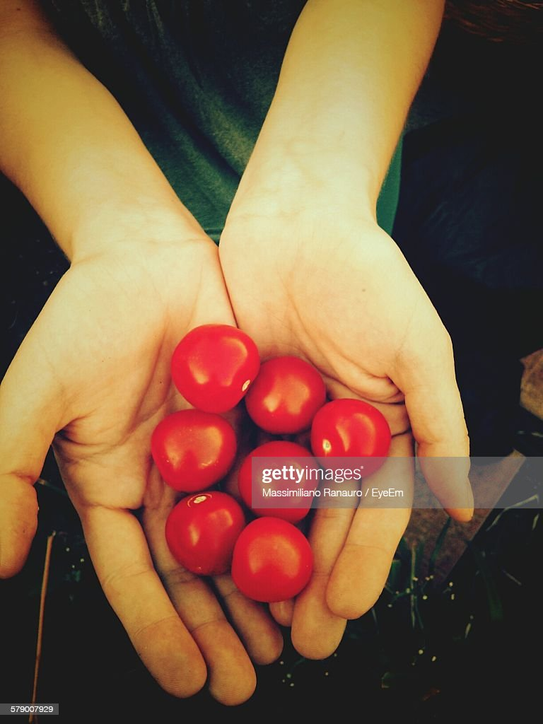 Cropped Image Of Person Holding Cherry Tomatoes : Stock Photo
