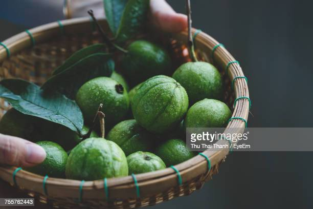 cropped image of person holding guava in basket - tropische frucht stock-fotos und bilder