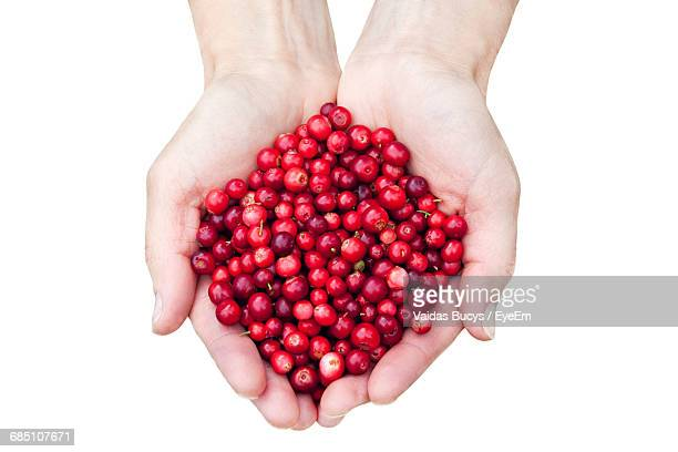 Cropped Image Of Person Holding Lingonberries Against White Background