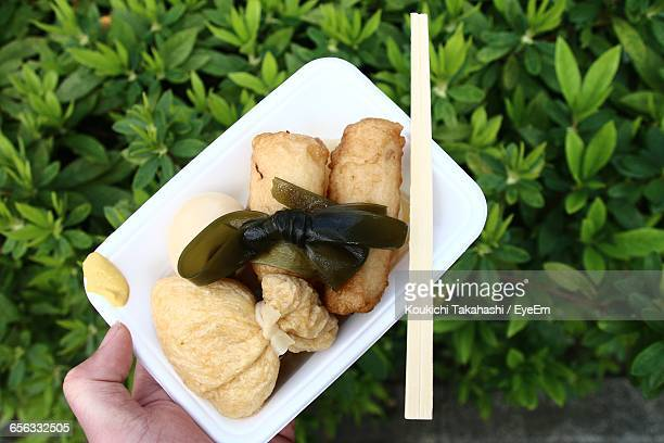 cropped image of person holding oden in plate over plants - oden fotografías e imágenes de stock