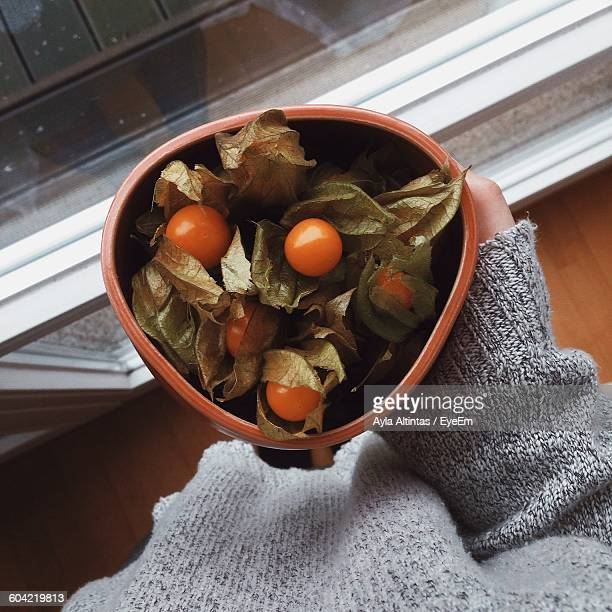 cropped image of person holding physalis in bowl - ホオズキ ストックフォトと画像