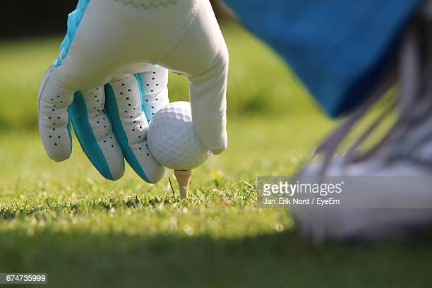 Cropped Image Of Person Placing Golf Ball On Tee
