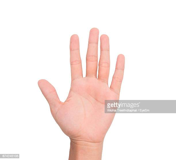 Cropped Image Of Person Showing Five Fingers Against White Background