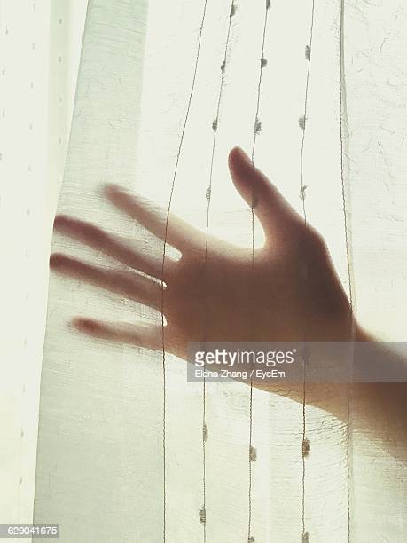 Cropped Image Of Person Touching Curtain