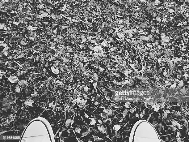 Cropped image of shoes on messy landscape