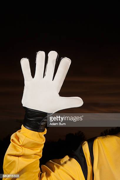 Cropped image of soccer goalie wearing glove