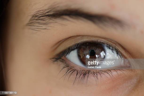 cropped image of woman eye - light brown eyes stock photos and pictures