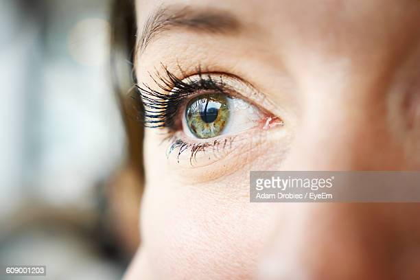 cropped image of woman eye - nahaufnahme stock-fotos und bilder