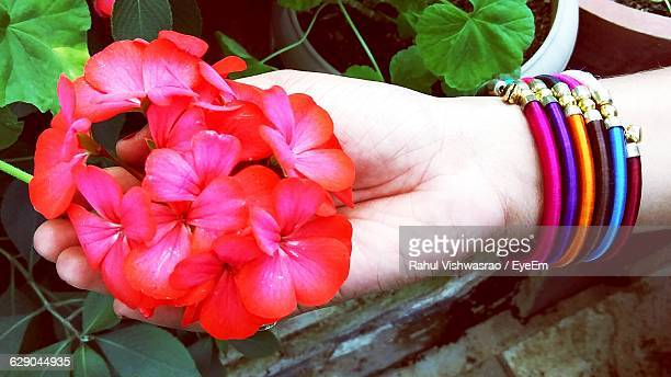 cropped image of woman hand holding red flowers - pulsera fotografías e imágenes de stock