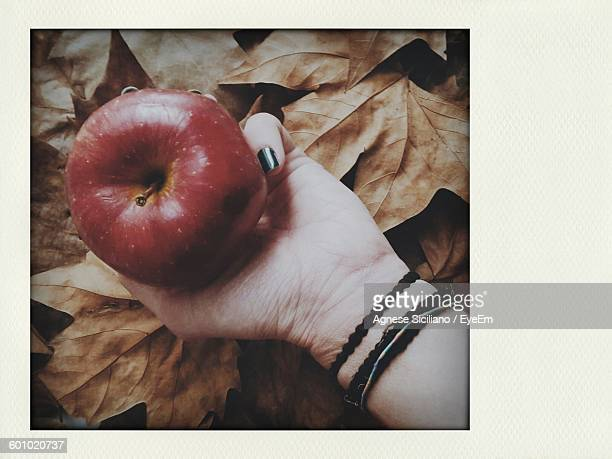 Cropped Image Of Woman Holding Apple Over Dry Leaves