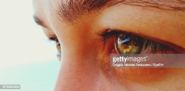 cropped image of woman looking away - green eyes stock pictures, royalty-free photos & images