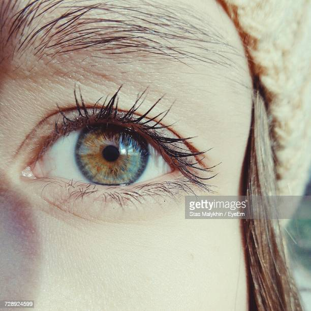 Cropped Image Of Woman With Brown Eye