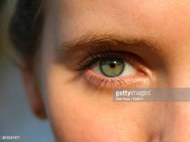 cropped image of woman with green eyes - green eyes stock pictures, royalty-free photos & images