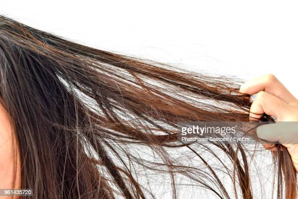 Cropped Image Of Woman With Tangled Hair Against White Background