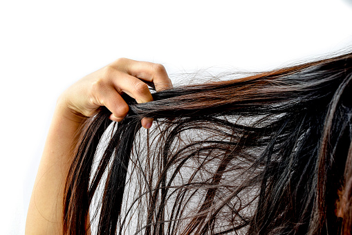 Cropped Image Of Woman With Tangled Hair Against White Background - gettyimageskorea