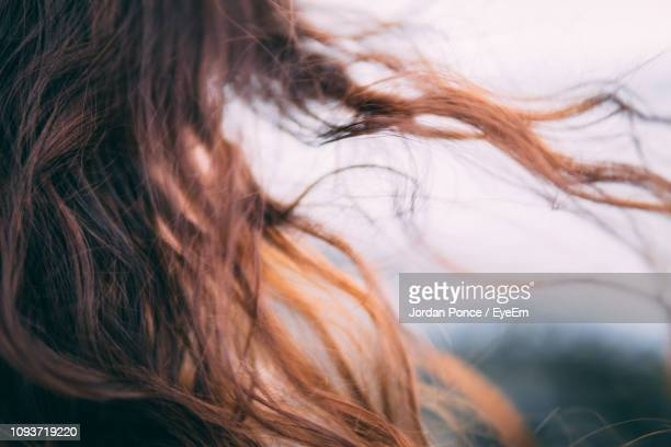 cropped image of woman with tousled hair - wind stockfoto's en -beelden