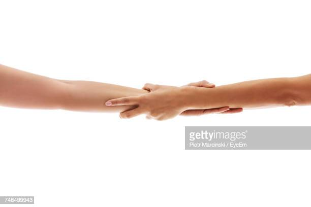 cropped image of women holding hands against white background - agarrados de la mano fotografías e imágenes de stock