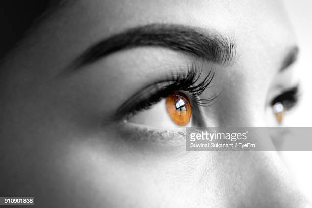 cropped image of young woman eye - isolated color stock pictures, royalty-free photos & images