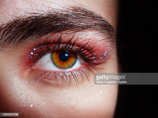 cropped portrait of woman against black background - eye make up stock pictures, royalty-free photos & images
