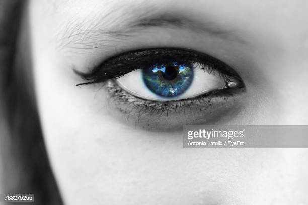 Cropped Portrait Of Woman Eye