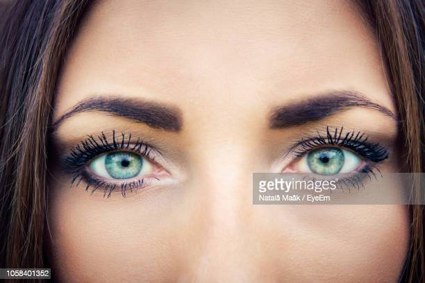 cropped portrait of woman eyes - green eyes stock pictures, royalty-free photos & images