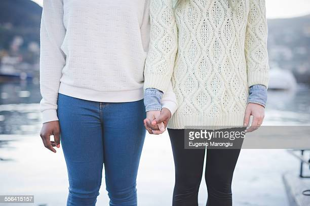 cropped shot of two young female friends at lakeside, lake como, italy - enge jeans stock-fotos und bilder