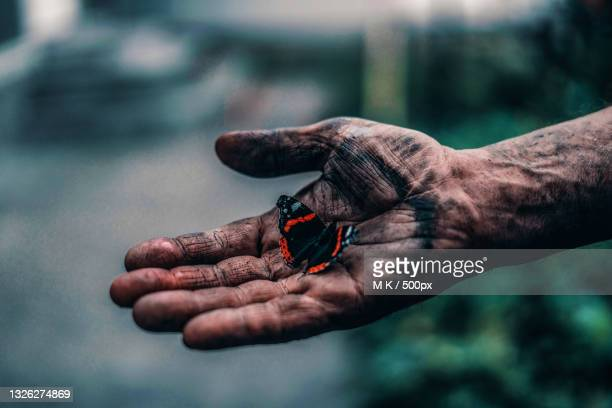 cropped soot covered hand holding butterfly - すす ストックフォトと画像