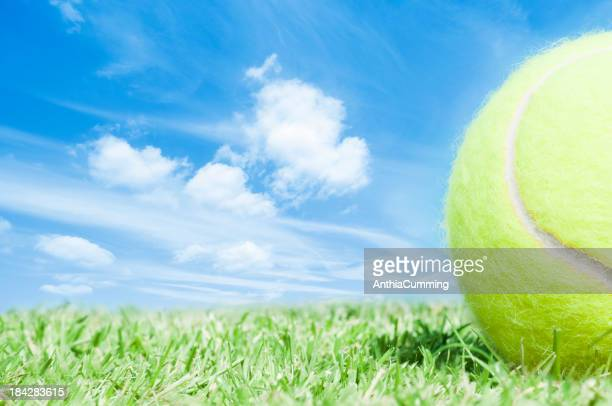 Cropped tennis ball lying on green grass with blue sky