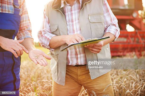 Cropped view of farmers in wheat field looking at clipboard